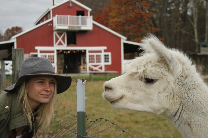 megan & alpacas
