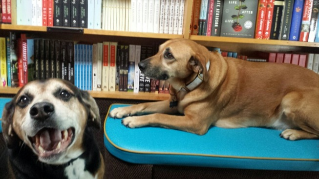 Opie and Belle Love Books.jpg